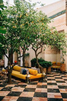 Tulum Hotel, Hotel Rome, Hotel Bali, Casa Hotel, Lisbon Hotel, Hotel Lounge, Hotel Rooftop Bar, Rooftop Restaurant, Miramonti Boutique Hotel