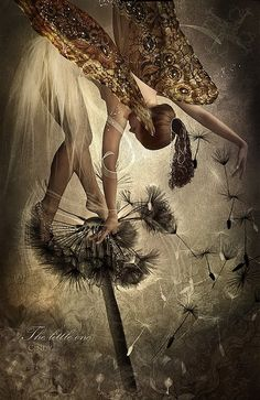 for the faeries ❧ fairy dancing on a dandelion