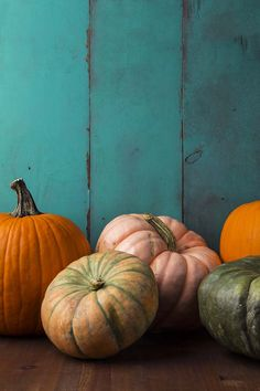 Kick off autumn with these pumpkin spiced beauty recipes. because, while while pumpkins look, smell and taste delicious, they are also packed with endless skin benefits, from anti-inflammatory to antioxidant. Thanksgiving Background, Fall Background, Pumpkin Wallpaper, Fall Wallpaper, October Wallpaper, Diy Pumpkin, Pumpkin Spice, Autumn Cozy, Autumn Aesthetic