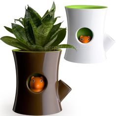 Log and squirrel self watering planter. The squirrel hides when it's out of water. So cute and so clever