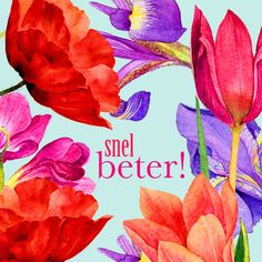 Vrolijke beterschapsbloemen- Greetz