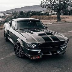 Elegante shelby mustang eleanor autos klassiker amp autos eleanor elegante klassiker mustang shelby vintage and classic cars Ford Mustang Shelby Gt500, Ford Shelby, Mustang Cars, Ford Mustang Eleanor, Mustang Muscle Car, Shelby Eleanor, 1967 Shelby Gt500, Ford Classic Cars, Classic Sports Cars