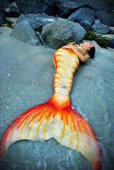 Mermaid in a Beautiful Tail Real Life Mermaids, Mermaids And Mermen, Mermaid Cove, Mermaid Diy, Girls With Tails, Realistic Mermaid Tails, Silicone Mermaid Tails, Mermaid Pictures, Merfolk
