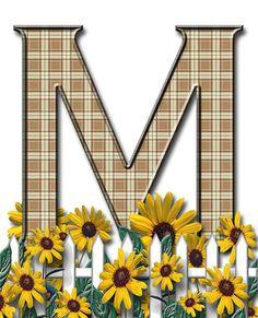 Letra con verja floral.....M