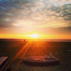 The beach, scheveningen the Netherlands