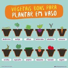 design your life Eco Garden, Garden Types, Garden Care, Garden Plants, Edible Garden, Comment Planter, Plants Are Friends, Design Your Life, Medicinal Herbs