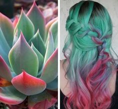 Gorgeous inspiration hair color design and style based on the Southwest's beautiful succulent plants by Asheton Silvers hotonbeauty pastel green hair color melt(Dyed Hair Green) Pastel Green Hair, Green Hair Colors, Hair Dye Colors, Bright Hair, Hair Color Blue, Cool Hair Color, Colorful Hair, Purple Hair, Red Purple