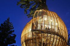 Redwood Treehouse. Auckland, New Zealand