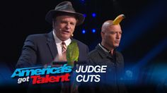 Dana Daniels: Howie Mandel and a Bird Help Comedic Magician - America's . Magic Tricks Revealed, Howie Mandel, America's Got Talent, The Magicians, Bird, Places, Music, Youtube, Movie Posters