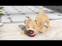 short animation film will make you cry # cczoon فيلم سيجعلك تبكي Disabled Dog, Pixar Shorts, Habits Of Mind, Movie Talk, Film School, Make You Cry, Independent Films, 3d Animation, Animation Mentor
