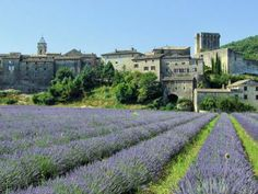 """Montclus. One of the official """"Most beautiful villages in France."""""""