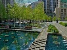 birch grove, water feature, plenty of seating - love the public space they've created (federal courthouse plaza in seattle, designed by peter walker and partners)