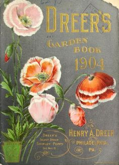 Illustration of 'Dreer's Select Strain Shirley Poppy' Front cover of 'Dreer's Garden Book 1904.' Henry A. Dreer. Philadelphia, P.A. U.S. Department of Agriculture, National Agricultural Library archive.org