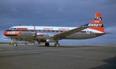 Australian Airlines, Air New Zealand, Aircraft Photos, Vintage Air, Commercial Aircraft, Air Travel, Airplane, Aviation, Flaxseed