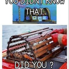 Did you know: The Krusty Krab is really a Lobster trap?.... (When I was young I thought it was a treasure chest)