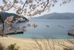 japan beaches - Google Search