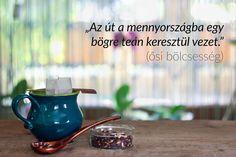 jázmin tea zsíréget)