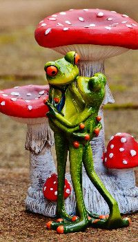 Valentine's Day Frog Wallpaper Best Love Wallpaper, Frog Wallpaper, Teal Wallpaper, Animal Wallpaper, Funny Frogs, Cute Frogs, Frog Statues, Garden Frogs, Frog Pictures