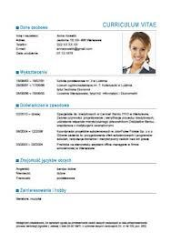 How To Prepare A Resume Entrancing How To Make Or Write A Cv Professional And Elegant 1  Career