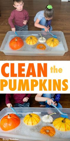 A quick and easy fall activity with pumpkins - fall sensory bin washing station - fall life skills activity from Busy Toddler Clean the pumpkins - a quick and easy toddler activity that all kids love. A fun Fall activity washing pumpkins in a sensory bin. Fall Activities For Toddlers, Toddler Learning Activities, Halloween Preschool Activities, Halloween With Toddlers, Thanksgiving Preschool Crafts, Life Skills Activities, Preschool Projects, Thanksgiving Desserts, Sensory Activities