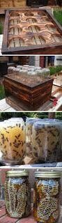 Mason Jar Bee Hives Made From Pallets - #pallets #diy