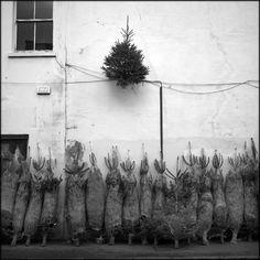 Christmas.  © Paul Salmon.