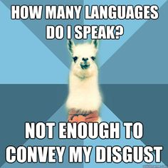 Linguist Llama. Apparently this is a thing and I've been missing out on the Linguist Llama