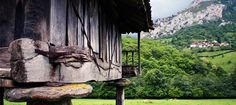 Asturias, un paraíso gastronómico: la ruta del chosco de Tineo.