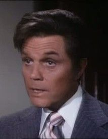 pin by lena berggren on jack lord the mcgarrett lord