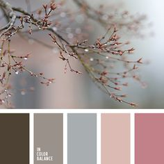 Kitchen paint schemes red design seeds 28 New ideas Bedroom Color Schemes, Bedroom Colors, Colour Schemes, Color Combos, Bedroom Ideas, Paint Schemes, Bedroom Neutral, Bedroom Art, Design Bedroom