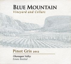 Blue Mountain Vineyard and Cellars. Love their Blue Mountain Brut. White Meat, White Wine, Red Wine, Pinot Blanc, Pinot Gris, Sauvignon Blanc, Blue Mountain, Wines, Vineyard