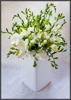 White freesia, all by itself, in a vase. classy.
