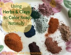 How to Naturally Color Soap with Plants, Roots, and Cla  https://www.healingharvesthomestead.com/home/2017/1/10/how-to-color-soap-with-plants-roots-claysnaturally  Heidi Villegas