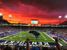 I took this photo at the football game Saturday against Florida. This school is so beautiful and so is the state of Kentucky in general. The school spirit here is amazing, I wonder what it is that makes us love this school and support our teams even when we lose.