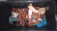Valaan mahasta löytynyttä muovijätettä.