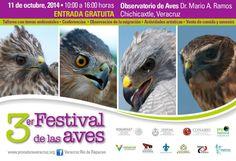 Evento de Día Internacional de las Aves Migratorias 3er Festival de las Aver; Veracruz.  International Migratory Bird Day Event 3rd BirdFest; Veracruz.  #BirdDay
