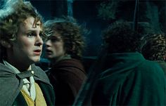 BROTHERTEDD.COM - animusrox: The Lord of the Rings: The Fellowship... Fellowship Of The Ring, Lord Of The Rings, Under The Stars, The Hobbit, Jackson, The Lord Of The Rings, Jackson Family, Lotr, Hobbit