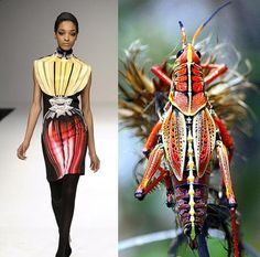 30 Colorful Fashion Trends Replicating the Insects - The Fashionables Weird Fashion, Colorful Fashion, Fashion Top, Moda Animal, Fashion Themes, Fashion Design, Fashion Styles, Sneaker Trend, Textiles