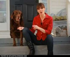 Dog Training With Positive Reinforcement – @eHow Pets Video • from APlaceToLoveDogs.com • dog dogs puppy puppies cute doggy doggies adorable funny fun silly photography