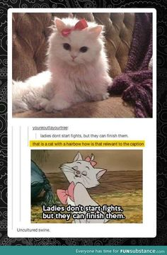 I love how tumblr has decided that anyone who doesn't know the Aristocats is uncultured swine.