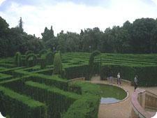 Insider's Guide to Barcelona's Secret Gardens