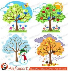 Four Seasons Trees Clipart and Vector with Spring, Summer, Fall and Winter Trees…