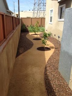 This is a drainage solution we came up with for a nice two story house in Torrance, We removed 6 inches of soil to allow the soil to slope properly for drainage away from the house. Then we added gravel and decomposed granite which is great fro drainage. Next we finished it off with the fruit trees they wanted. It was a nice way to fill the space with the plants they wanted and a way to keep from having trees in the middle of there back yard.