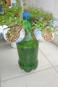 Self Watering Propeller Bottle Garden. For that you need Tools used: Hand Drill, 1 inch drill bit, Scissors, Clear gutter Silicon. Just make it and enjoy.