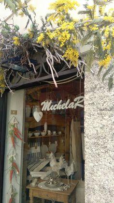 Mimosa www.michelarmaison.it