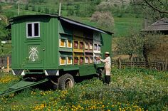 ' In Valeni, a village in the Iza valley, beekeeper Gheorghe Utan is able to transport his hives to flower rich environments in this bee-wagon. Rio Grande, Bee Rocks, Hives And Honey, Honey Bees, Wolf People, Bee Hive Plans, Buzz Bee, Insect Hotel, Bee House