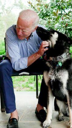 Shelter Dogs, Rescue Dogs, Doug The Pug, Puppy Images, Buy A Dog, German Shepherd Puppies, German Shepherds, Family Dogs, Joe Biden
