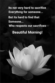 Morning Prayer Quotes, Hindi Good Morning Quotes, Good Morning Inspirational Quotes, Morning Greetings Quotes, Good Night Quotes, Morning Prayers, Morning Messages, Good Morning Msg, Good Morning Cards