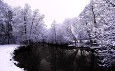 theme hd winter in high quality