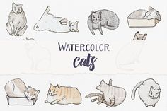Watercolor Cats by Petite Salade on @creativemarket